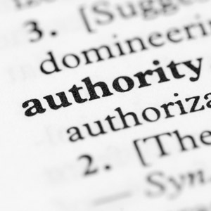 Site Authority Importance For Rankings