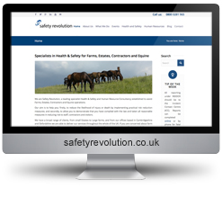 Safety Revolution Ltd SEO results